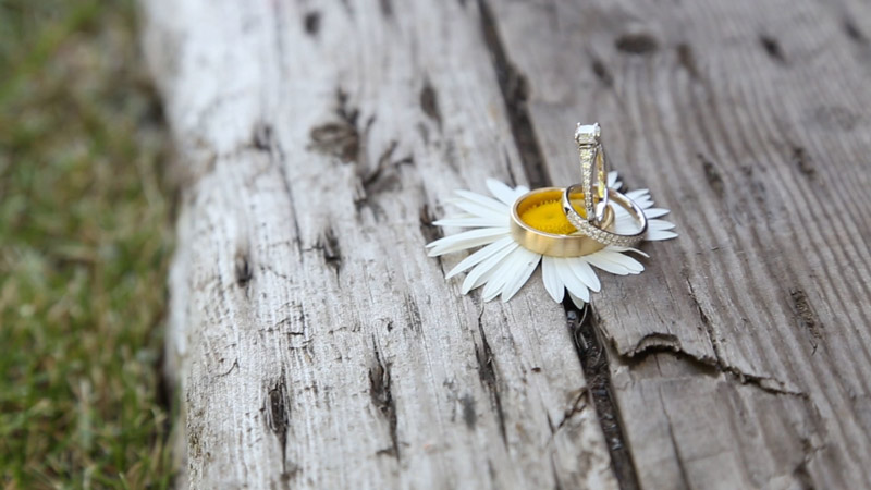 rings-and-daisy-web